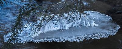 Photograph - Magic Ice Carpet Five by Christopher Burnett