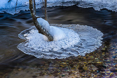 Photograph - Magic Ice Carpet Three by Christopher Burnett
