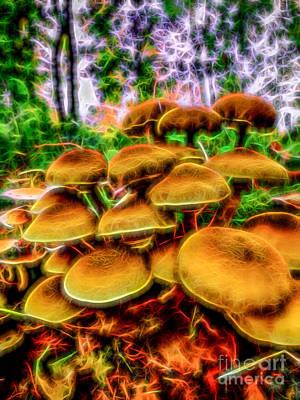 Photograph - Magic Mushroom-1 by Casper Cammeraat