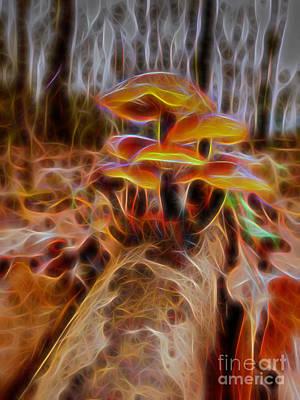 Photograph - Magic Mushroom-2 by Casper Cammeraat