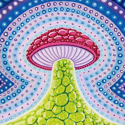 Fractal Geometry Painting - Magic Mushroom by Christopher Sheehan
