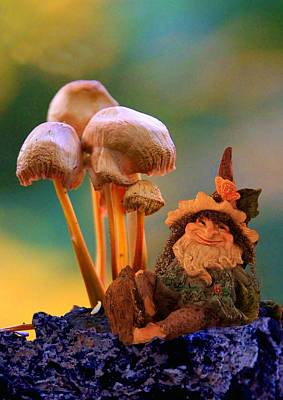 Digital Art - Magic Mushrooms by Ed Lukas