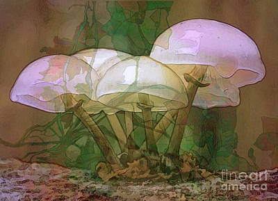 Toadstool Digital Art - Magic Mushrooms by Ursula Freer