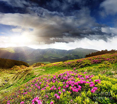 Art Print featuring the photograph Magic Pink Summer Mountain by Boon Mee
