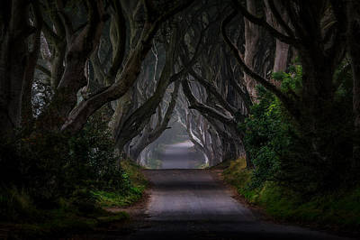 Irish Landscape Photograph - Magic Road by Piotr Galus