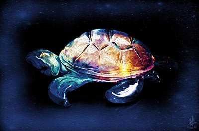 Photograph - Magic Turtle by Pennie  McCracken