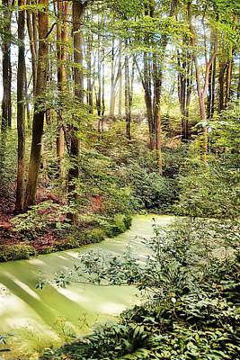 Magic World Of Botanic Gardens Art Print