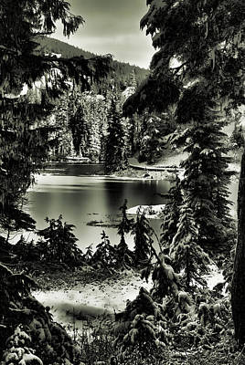 Photograph - Magical Evening - Bw by Marilyn Wilson