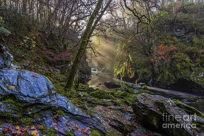 Magical Fairy Glen Art Print by Ian Mitchell