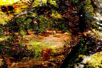 Painting - Magical Forest - Myth - Fantasy by Marie Jamieson