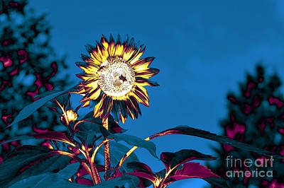 Digital Art - Magical Garden 6 by Leo Symon