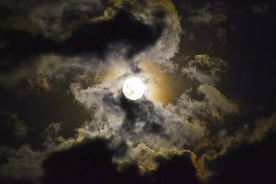 Photograph - Magical Moon by Bonnie Leigh Delar