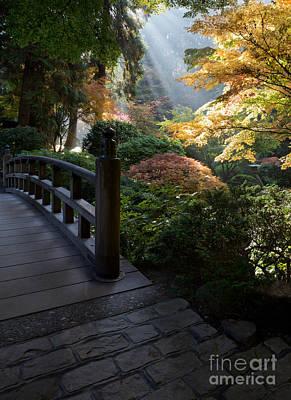 Bridge Fall Colors Photograph - Magical Morning by Bridget Calip