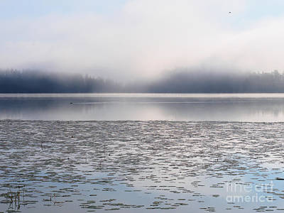 Magical Morning Of Mist Art Print