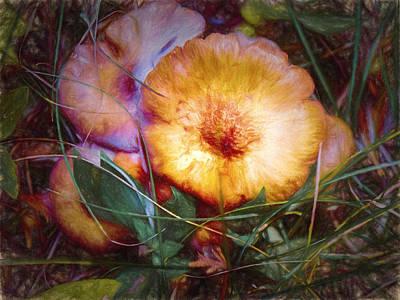 Fungi Digital Art - Magical Mushrooms by Jo-Anne Gazo-McKim