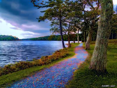 Magical Path Art Print