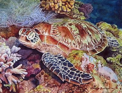 Magical Sea Turtle Art Print by Sharon Farber