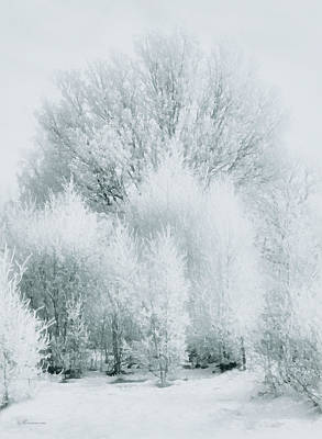 Photograph - Magical Snow Palace by Georgiana Romanovna