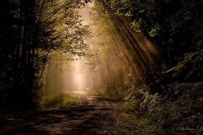 Mt Hood Digital Art - Magical Sunlight 2 by Sheldon Anderson