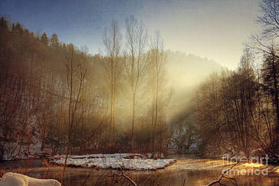 Licht Wall Art - Photograph - Magik Winter Light by Dirk Wuestenhagen