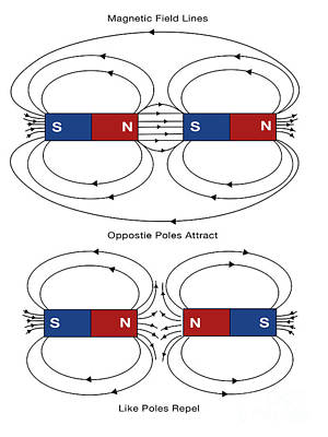 Info Graphic Photograph - Magnetic Field Lines by Spencer Sutton
