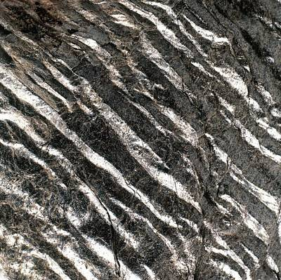 Magnification Photograph - Magnification Of Grain Of Schist Rock by Dorling Kindersley/uig