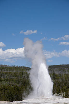 Photograph - Magnificent Geyser by Brenda Kean