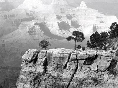 Photograph - Magnificent Grand Canyon by Will Borden