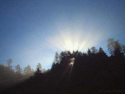 Photograph - Magnificent Light Two by Joyce Dickens