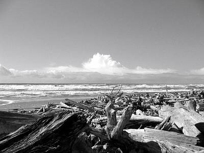 Photograph - Magnificent Oregon by Will Borden