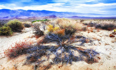 Photograph - Magnificent Scenic California Desert Sage Brush by Jerry Cowart