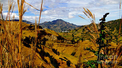 Patchwork Quilts Photograph - Magnificent Valley In The Andes by Al Bourassa