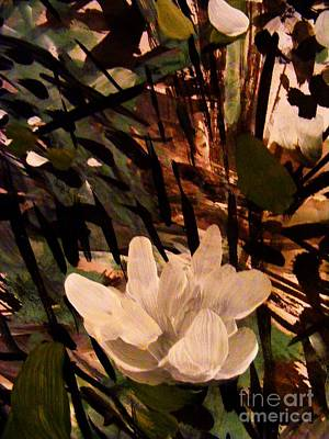 Painting - Magnolia Abstract by Nancy Kane Chapman
