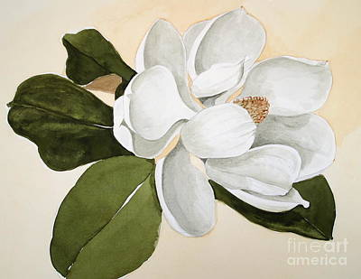 Art Print featuring the painting Magnolia Bloom by Nancy Kane Chapman