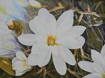 Magnolia Blossom Art Print by Adel Nemeth
