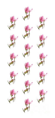 Photograph - Magnolia Blossom Panel by Andee Design