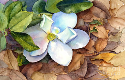 Magnolia Art Print by Bonnie Rinier