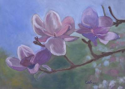 Pastel - Magnolia Branch by Calliope Thomas