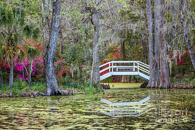Photograph - Magnolia Bridge by Susan Cole Kelly