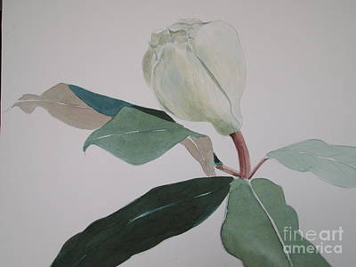 Art Print featuring the painting Magnolia Bud by Nancy Kane Chapman