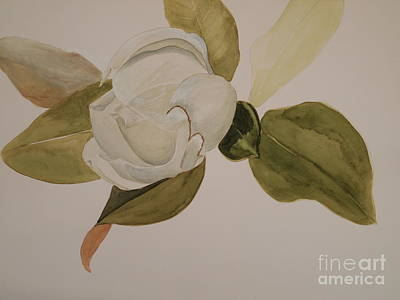 Art Print featuring the painting Magnolia California by Nancy Kane Chapman