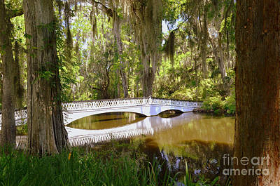 Photograph - Magnolia Gardens Bridge by Allen Beatty