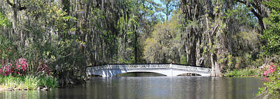 Photograph - Charleston Sc Magnolia Gardens  by Ella Char