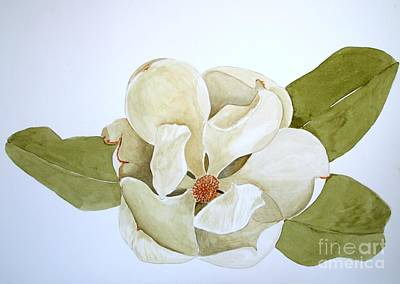 Art Print featuring the painting Magnolia Highlight by Nancy Kane Chapman