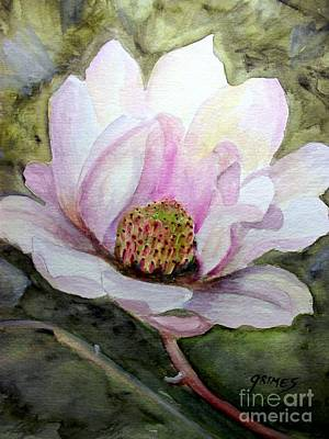 Magnolia In Bloom Art Print by Carol Grimes