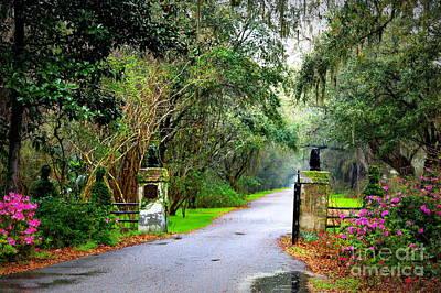 Photograph - Magnolia Plantation Gate by Carol Groenen