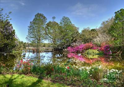 Photograph - Magnolia Plantation Spring Lake by Kathy Baccari