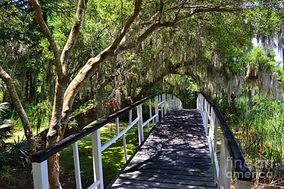 Garden Bridge Photograph - Magnolia Spanish Moss Bridge by Amy Lucid