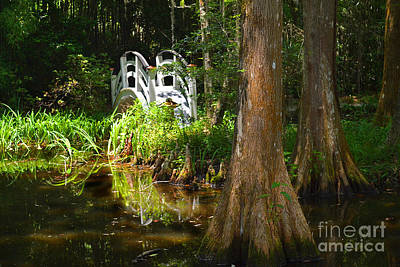 Garden Bridge Photograph - Magnolia Swamp Bridge by Amy Lucid