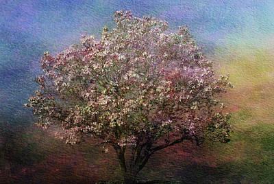 Blooming Digital Art - Magnolia Tree In Bloom by Sandy Keeton
